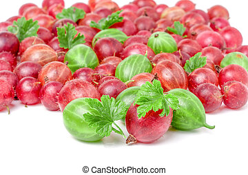 red and green gooseberries with leaves isolated on white background