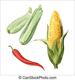 Set of vector watercolor vegetables. Zucchini, corn, red chili