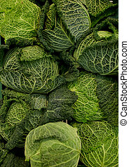 close up of savoy cabbages - harvest, food, vegetables and...