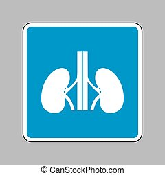 Human kidneys sign. White icon on blue sign as background.