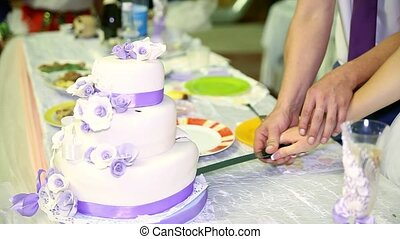 A bride and a groom is cutting their wedding cake Ukraine