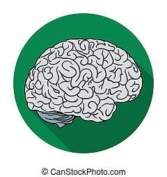 平ら, スタイル, イラスト, 背景, シンボル, 隔離された, 脳,  rastr, 人間, 白, アイコン, 器官, 株