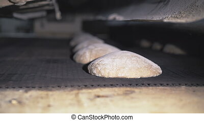 Making bread in a bakery with equipment