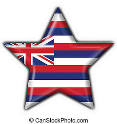 Hawaii (USA State) button flag star shape - 3d made