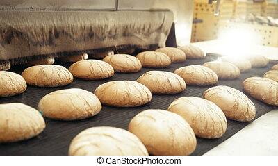 Preparing loafs of wheat bread on conveyer in bakery 4K.