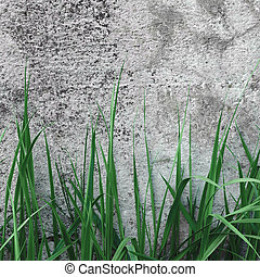 Dark Grey Coarse Concrete Stone Wall Texture, Green Grass, Horizontal Macro Closeup Old Aged Weathered Detailed Natural Gray Rustic Textured Grungy Stonewall Background Pattern Detail, Blank Empty Vintage Grunge Copy Space