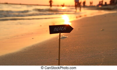 beach pointer and the sunset on the sea, holidays and travel...