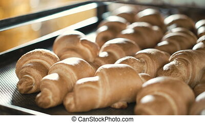 Baking crescent rolls in the oven