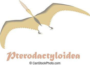 Dinosaur Pterodactyloidea illustration - Dinosaur,...