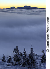 snowy trees on winter mountains. - snowy trees on winter...