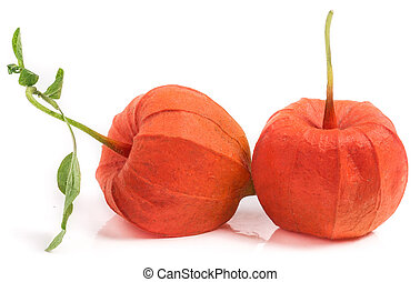 two closed husk tomatoes with leaf isolated on white...