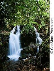 Waterfalls of Bwindi forest. 2 - Wateralls of Bwindi forest....