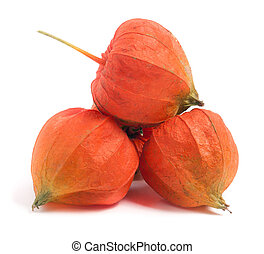 husk tomatoes or physalis isolated on white background -...