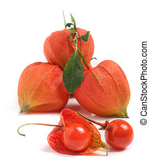 husk tomatoes or physalis with leaf isolated on white...