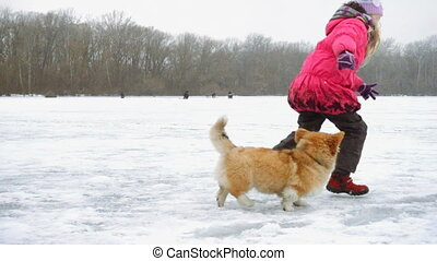 funny corgi fluffy puppy walking with little girl outdoors at winter day