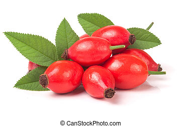 rose hip berry with leaves isolated on white background.