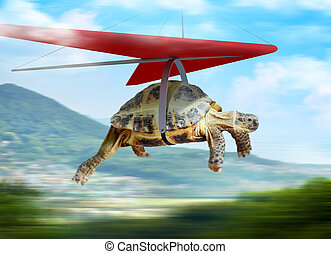 Funny turtle flying on hang-glider in the mountains