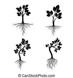 Set Black Trees with Roots. Vector Illustration.