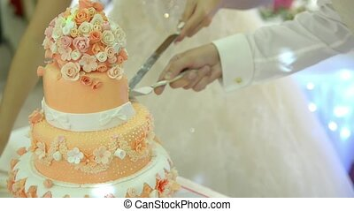 Cutting and folding plates on the wedding cake indoor