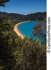 Beautiful ocean bay with golden sandy beach in Abel Tasman National Park, New Zealand South Island