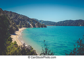 Beautiful dreamy ocean bay with golden sandy beach in Abel Tasman National Park, New Zealand South Island