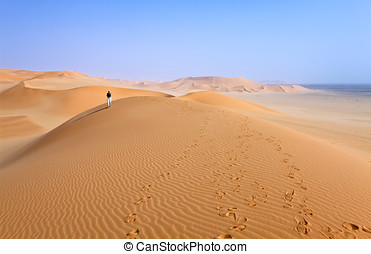 Libya,Sahara desert,the Ubari dunes area