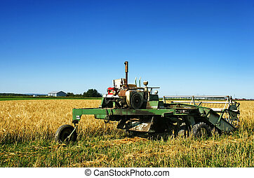 Old rusted combine harvester and barley field