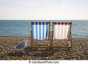 Seagul and Deckchairs, Brighton - Seagul with two deckchairs...