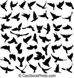 Concept of love or peace. Set silhouettes doves. Vector...
