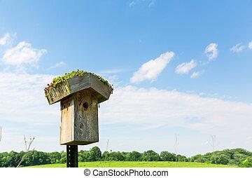 Nesting box - Wooden nesting box against blue sky