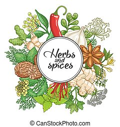 Vector hot round design with spices and herbs. Decorative...