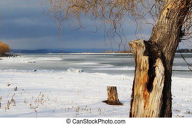 Beautiful winter landscape, frozen river Danube and weeping...