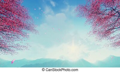 Cherry blossom petals falling from trees slow-mo - Flowering...