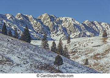 Piatra Craiului mountains, Romania - Sunny winter alpine...