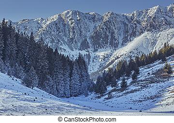 Piatra Craiului National Park, Romania - Winter alpine...