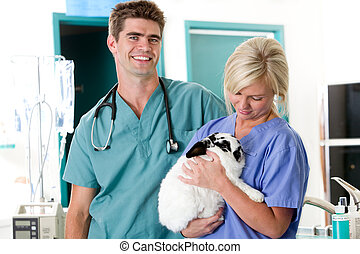 Small Animal Vet Clinic - A vet clinic portrait with one...