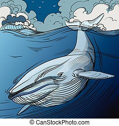 Blue Whale Diving - Blue Whale underwater with streams of...