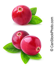 Isolated cranberries. Two images of cranberry fruits with...