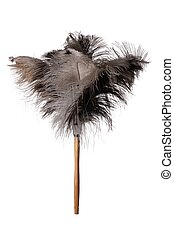 Ostrich Feather Duster - Isolated
