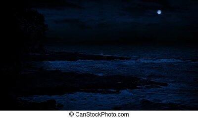 Rugged Beach Shore Under Full Moon - Wind swept rocky beach...