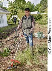 Trimming the garden grass