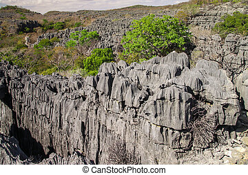 Tsingy National Park - Curiously strange rock formations...