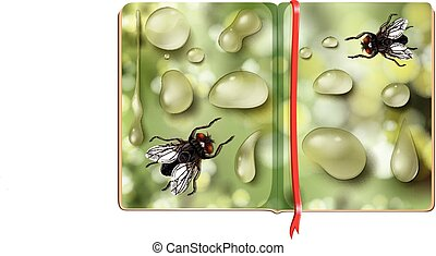 Houseflies and water drops in the book illustration