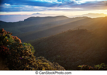 Sri Lanka: highland Horton Plains National Park - Sri Lanka:...