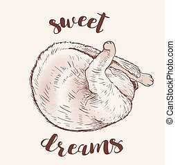 Cute sleeping cat. Hand drawn vector illustration.