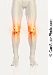 Knee painful - skeleton x-ray.