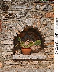Succulent in niche in wall in Spain