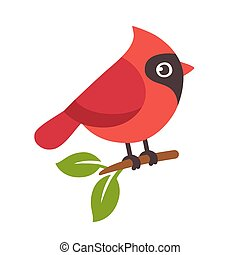 Red cardinal bird - Red northern cardinal bird on tree...