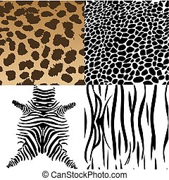 Animals skin Vector Illustration