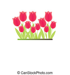Branch of red tulip. vector - Branch of red flowers. vector...